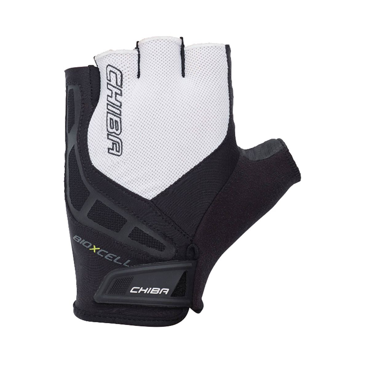 BIOXCELL gloves